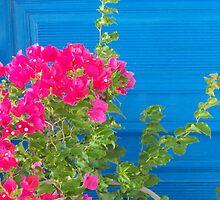 Greek Blue Door by SlavicaB