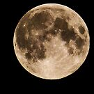 Hunters Moon by marting04