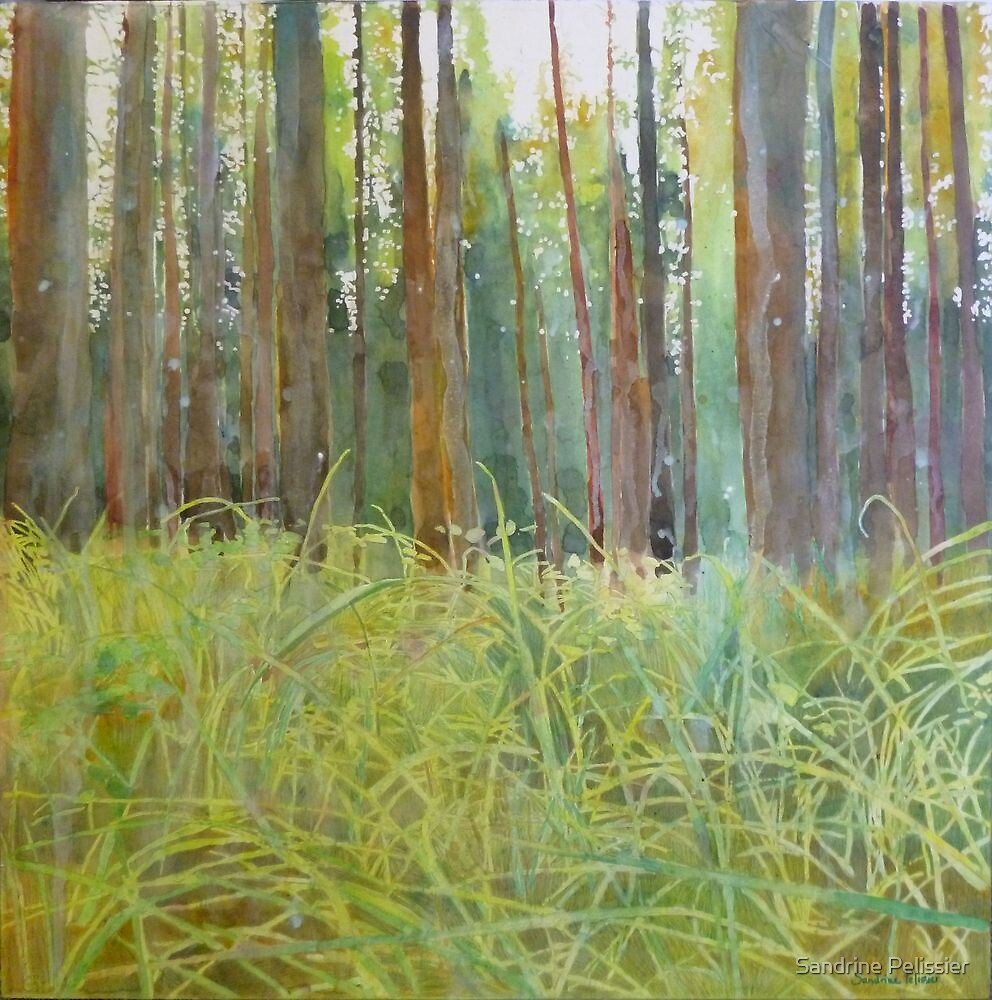 Playing in the grass, watercolor and mixed media on paper mounted on board by Sandrine Pelissier
