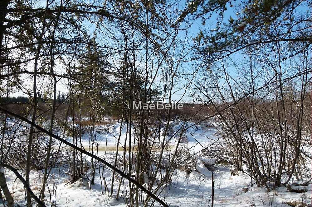 The Frozen Creek by MaeBelle