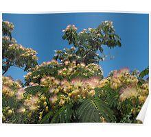 Greek flowers in the Sky Poster