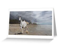 Running free (the unicorn) Greeting Card