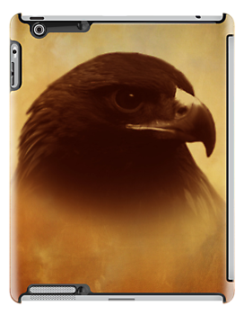 Juvenile Eagle iPad Cover by Pamela Phelps