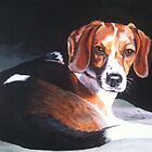 Golden Eyes - Young Beagle by EJLazenbyArt