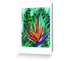 Bird of Paradise Crane Flower Acrylic Painting Greeting Card