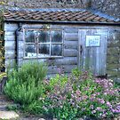 Gertrude Jekyll's Potting Shed by Colin Metcalf