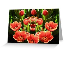 Tulips           (EH) Greeting Card