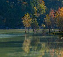 AUTUNNO Alba sul lago - AUTUMN Lake dawn 9674 by Enrico Pelos