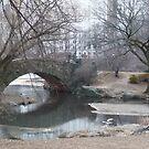 New York Winter by WhiteDiamond