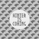 winter is coming by aprilbritt