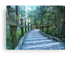 Swallow Falls Canvas Print