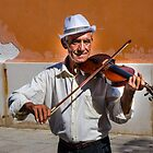 Street musician with violin - Venice by David Galson