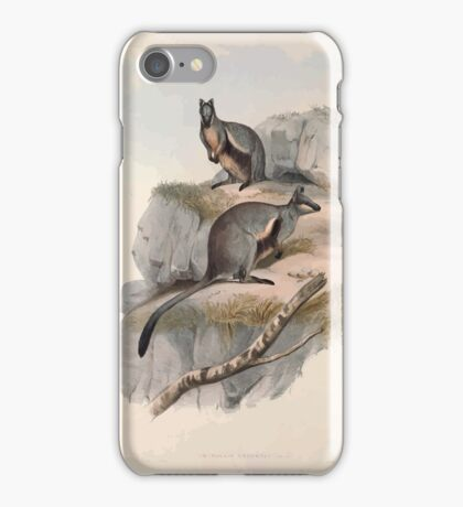 A monograph of the Macropodidæ or family of kangaroos John Gould 1842 024 Petrogale Lateralis iPhone Case/Skin