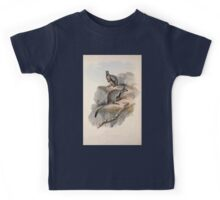 A monograph of the Macropodidæ or family of kangaroos John Gould 1842 024 Petrogale Lateralis Kids Tee