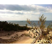 lake view atop a dune Photographic Print