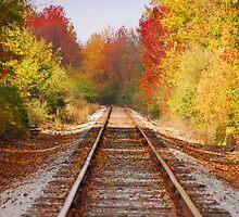 Fading Tracks by Mary Carol Story