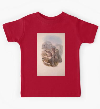 A monograph of the Macropodidæ or family of kangaroos John Gould 1842 006 Oetrogale Bracuydtis Kids Tee
