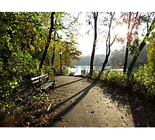 Central Park, New York City Photographic Print