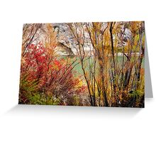 Brush of Color Greeting Card