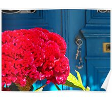 Greek Island Door and Flower 2 #photography Poster
