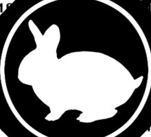 Follow The White Rabbit Sticker