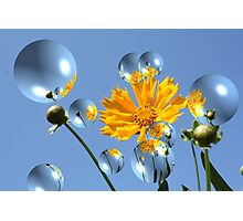 Bubbles and Flowers 18 Photographic Print