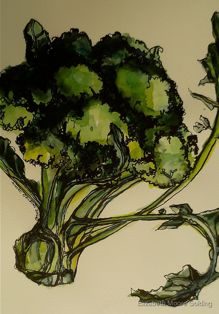 Broccoli. Pen and wash on Arches paper. Elizabeth Moore Golding Ⓒ2012 by Elizabeth Moore Golding