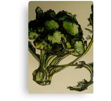 Broccoli. Pen and wash on Arches paper. Elizabeth Moore Golding Ⓒ2012 Canvas Print
