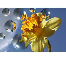 Bubbles and Flowers 22 Photographic Print