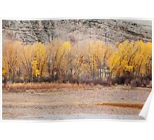 A Slice of Autumn Poster