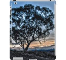 Evenings Last Light HDR iPad Case/Skin