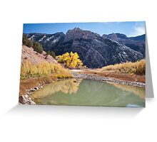 Autumn at the Cove 2 Greeting Card