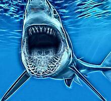 Wild nature - shark #2 by Wiedzminka