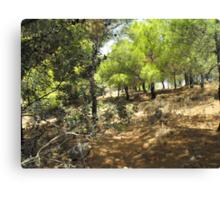 Beautiful Greek Island Forest Canvas Print