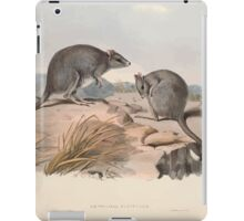 A monograph of the Macropodidæ or family of kangaroos John Gould 1842 029 Bettongia Cuniculus iPad Case/Skin