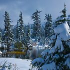 Snow Fall in the Mountains by lizalady