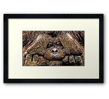 Wild nature - chimp Framed Print