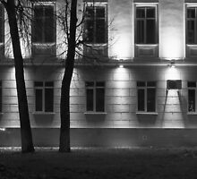 Two Trees at Night and the Bright Building in Monochrome by NeonAbstracts