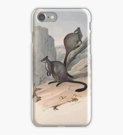 A monograph of the Macropodidæ or family of kangaroos John Gould 1842 023 Petrogale Penicillata iPhone Case/Skin