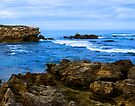 Warnambool rocks by Yukondick