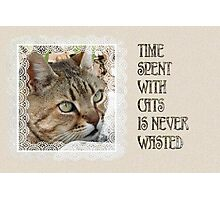Time Spent With Cats Is Never Wasted Greeting Card Photographic Print
