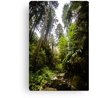 Giants Stand, Giants Roamed Canvas Print