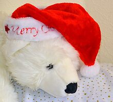 Bear y Merry Christmas to you ....... by lynn carter