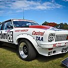 Marlbro Holden Torana Hatch A9X by Clintpix