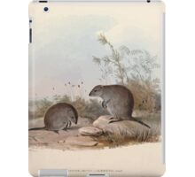 A monograph of the Macropodidæ or family of kangaroos John Gould 1842 015 Hypsiprymnus Gilbertii iPad Case/Skin