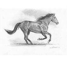Galloping horse drawing Photographic Print