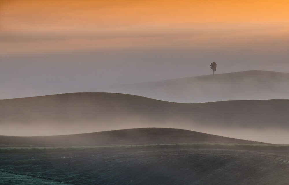 In the mist by Wonderful Tuscany Landscapes