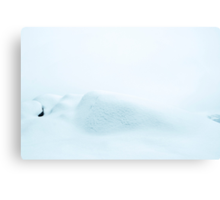 Snø Canvas Print