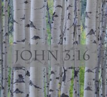 John 3:16 - Aspens  Sticker