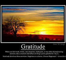 Gratitude by wisdomwords